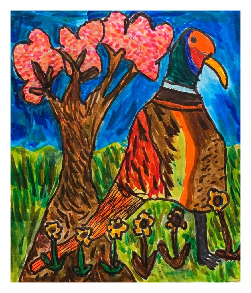 There's A Pheasant That Lives In My Garden